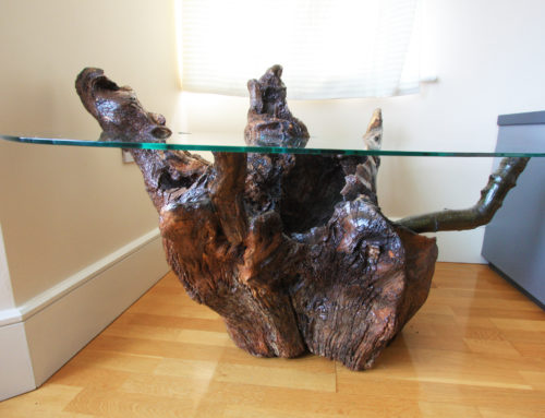 Unique Root Base Side Table